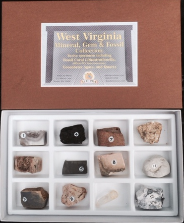 Mineral Gem and Fossil Collection - WV Treasures